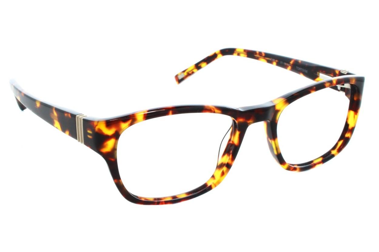 Jones NY J748 Eyeglasses - Tortoise