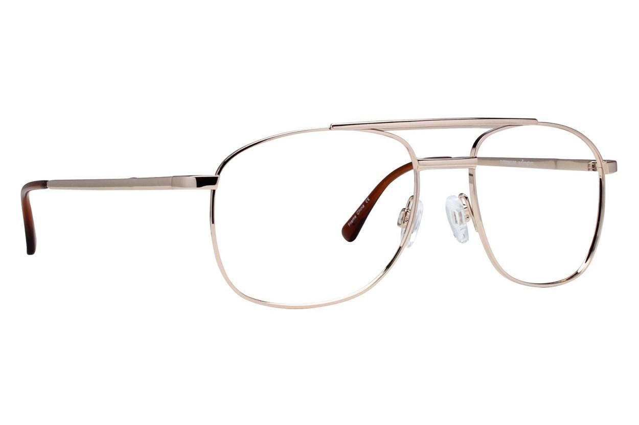 Arlington AR1007 Eyeglasses - Gold