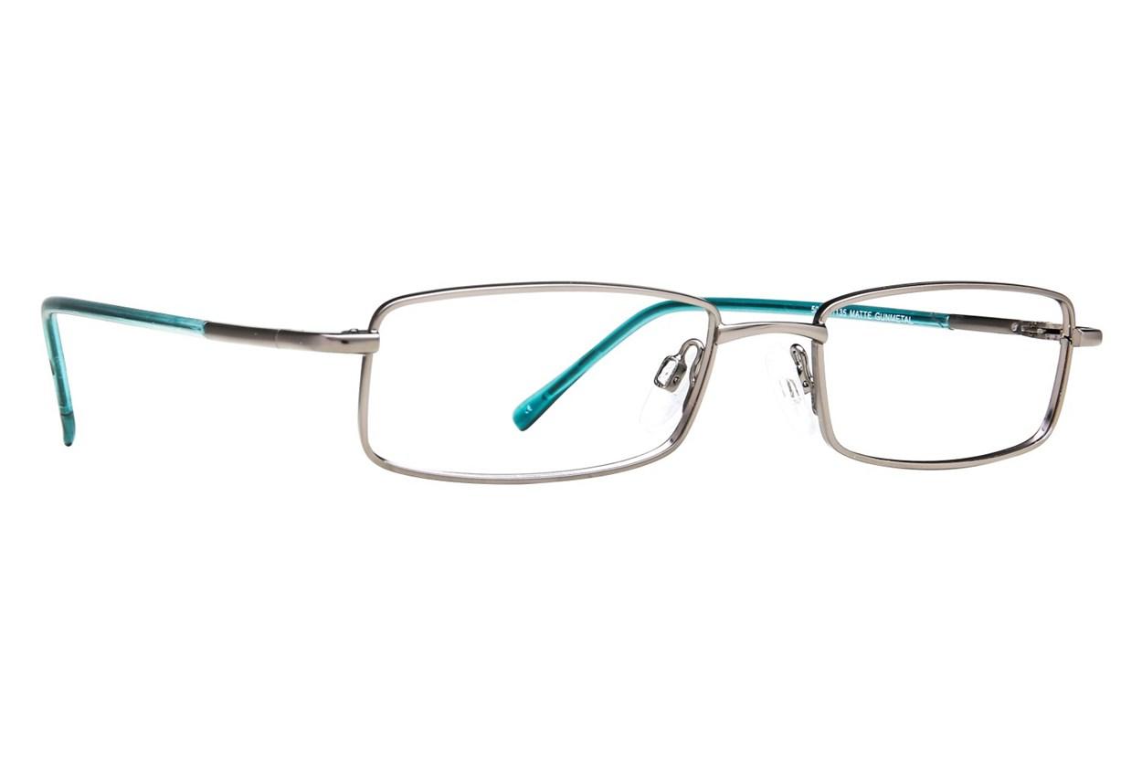 Arlington AR1009 Eyeglasses - Gray