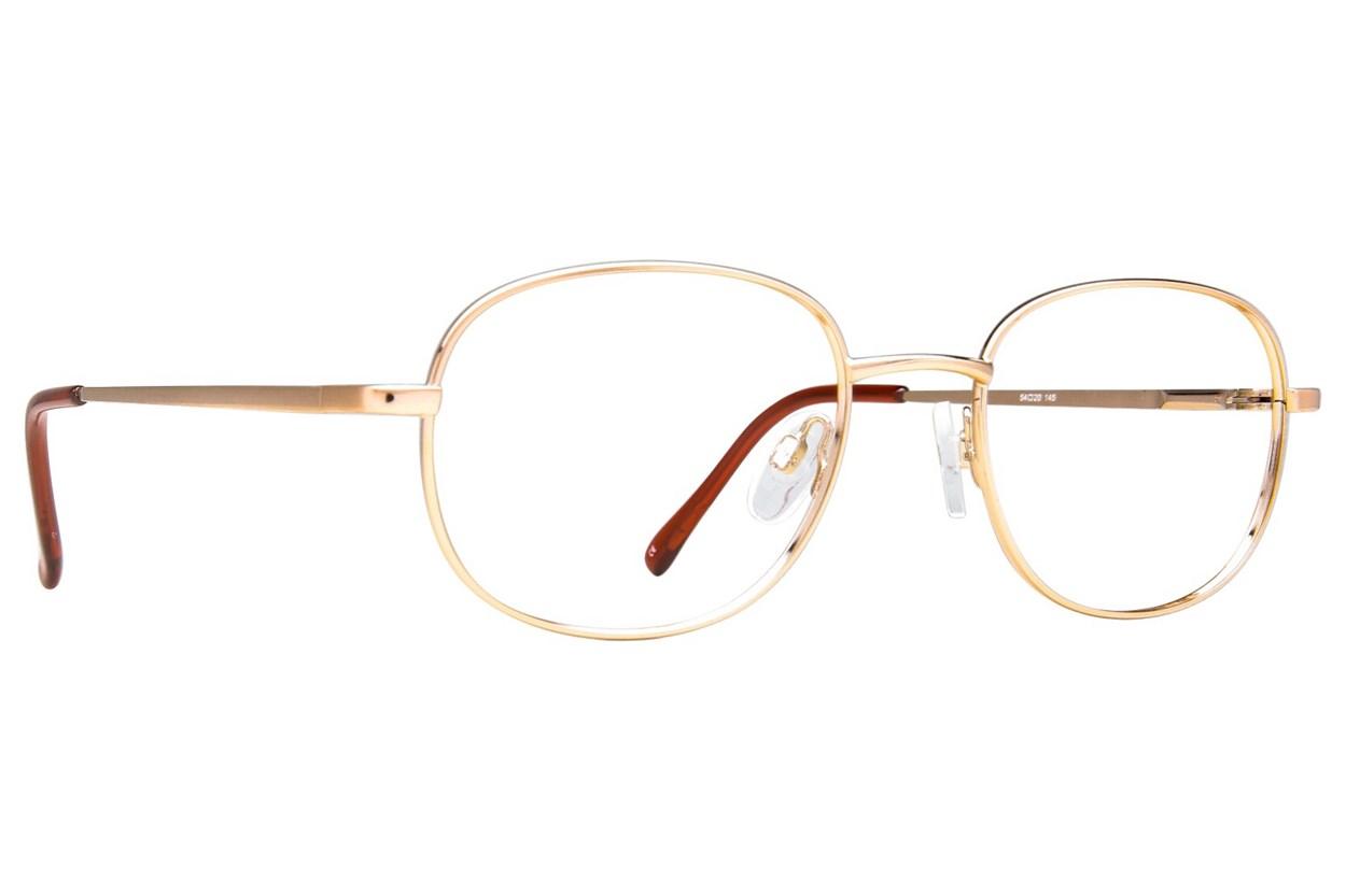 Arlington AR1011 Eyeglasses - Gold