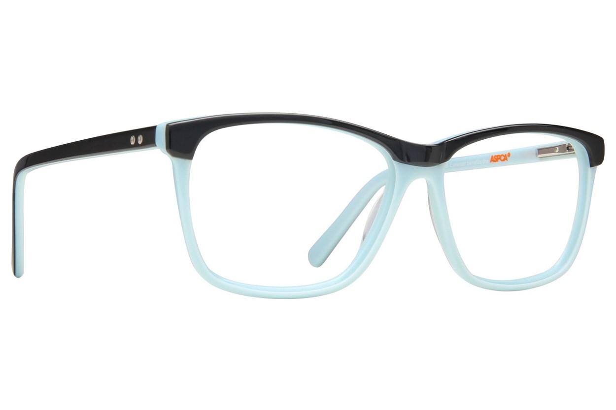 Paws n Claws B 907 Eyeglasses - Black