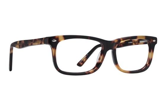 Lunettos Dylan Eyeglasses - Tortoise