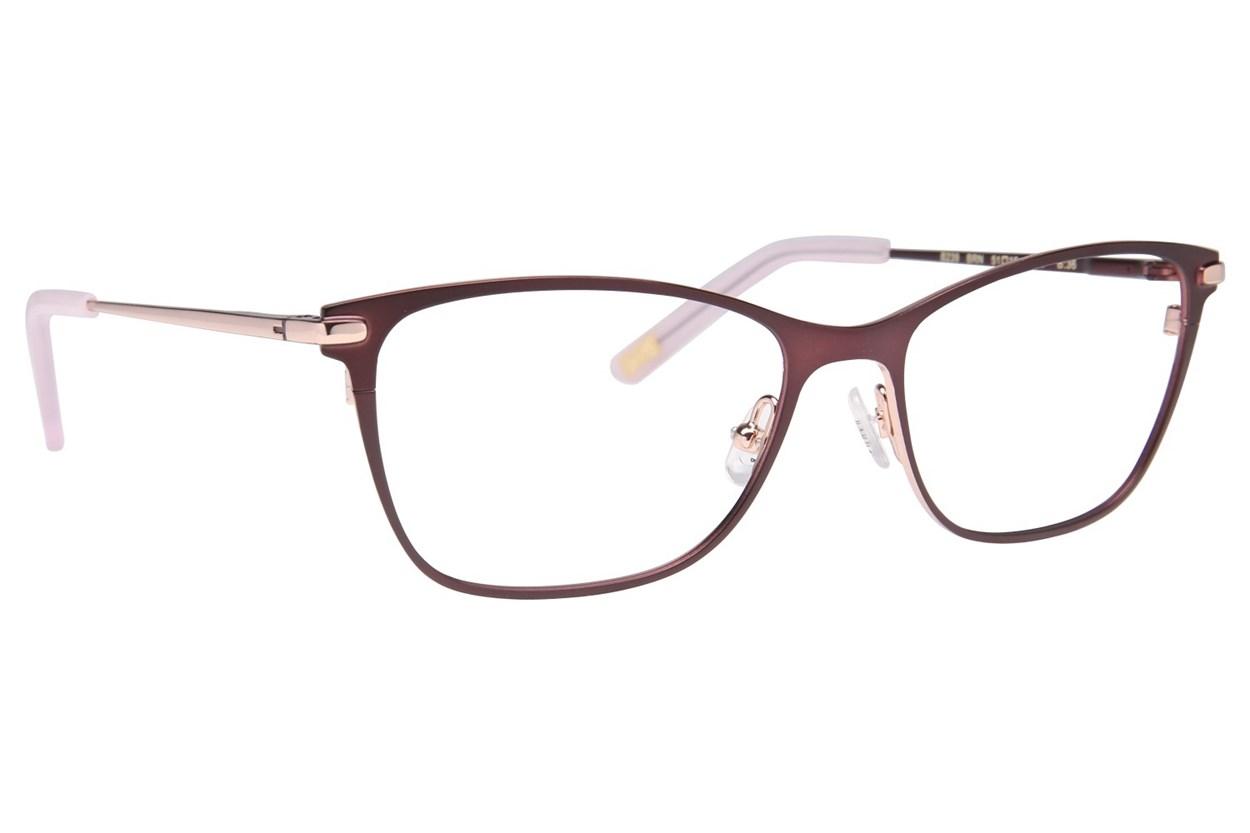 Ted Baker B239 Eyeglasses - Brown