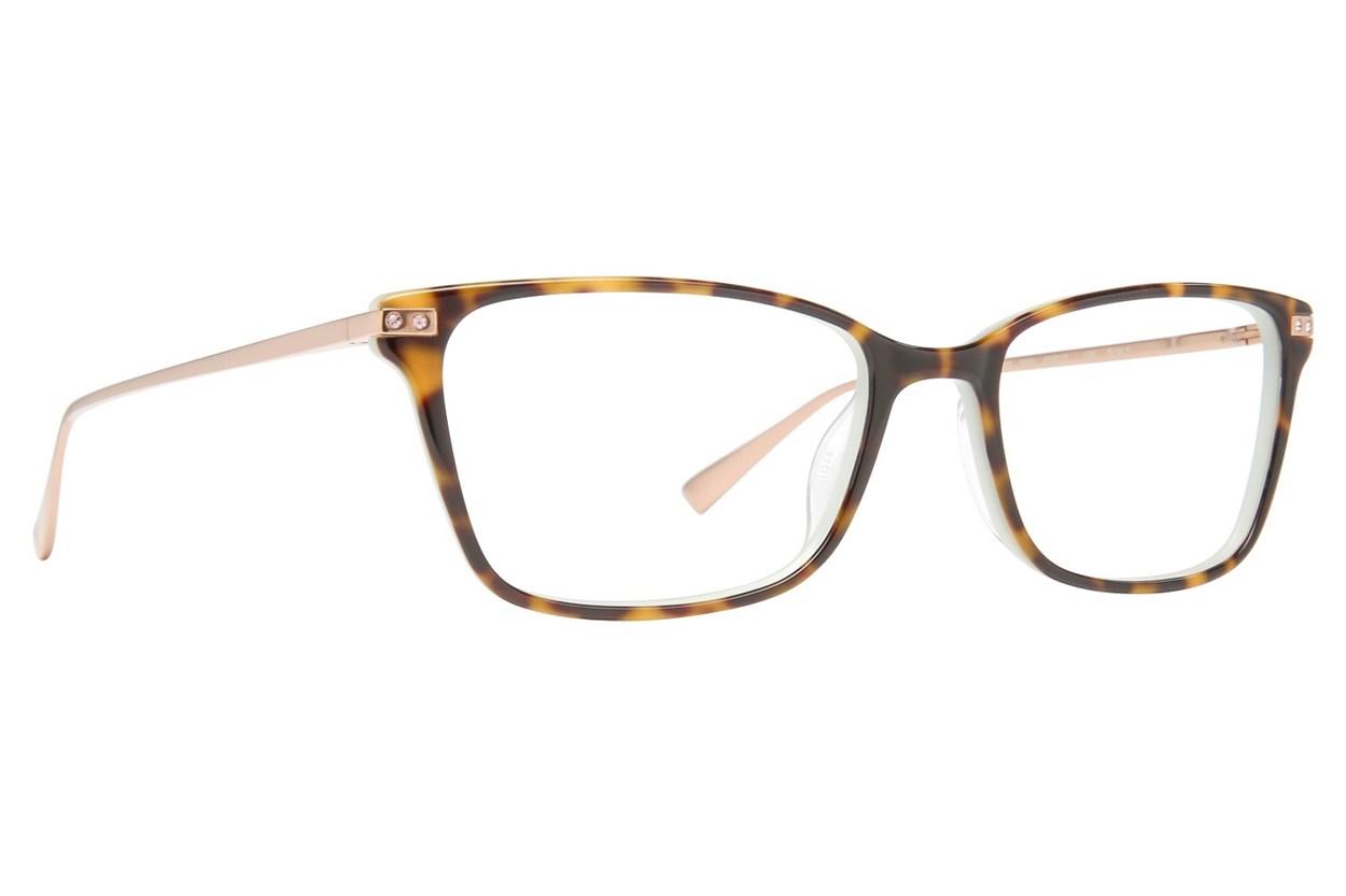 Ted Baker B747 Eyeglasses - Tortoise