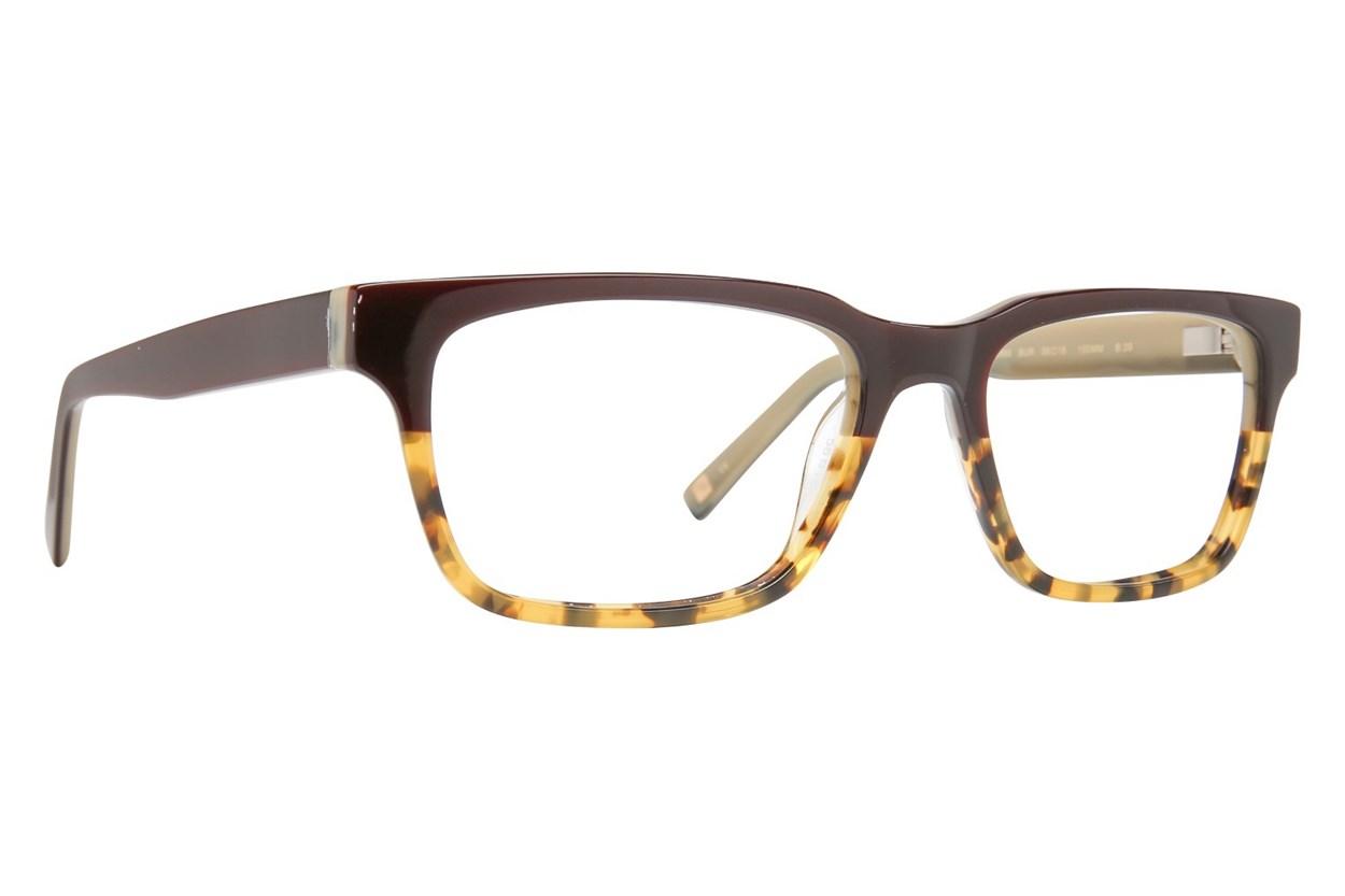Ted Baker B889 Eyeglasses - Tortoise