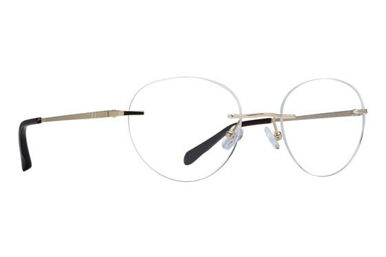 Arlington AR1044 Eyeglasses - Gold