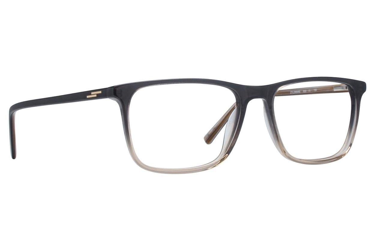 Randy Jackson RJ 3060 Eyeglasses - Gray